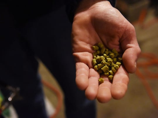 A handful of the West Coast hop pellets Manny Holl