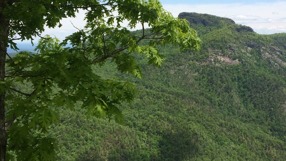 The Linville Gorge Wilderness in the Pisgah National