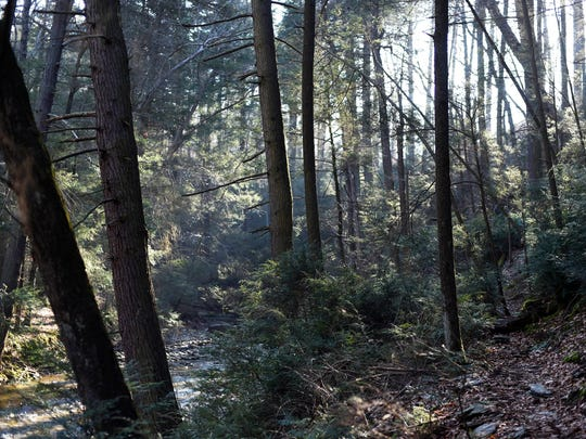 The Mason-Dixon trail winds along-side Otter Creek