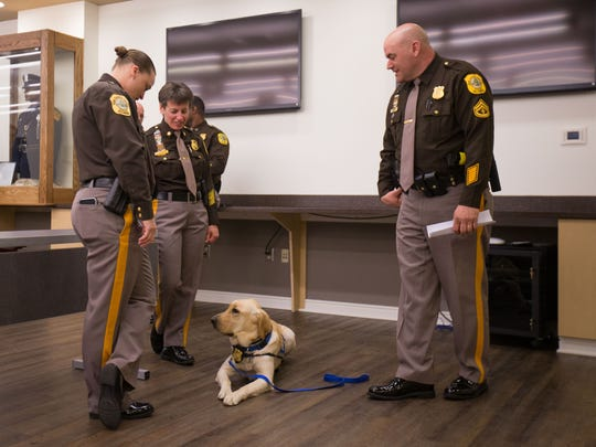 Nikko, a facility assistance dog with the New Castle County Police, is the center of attention during a press conference at the Paul J. Sweeney Public Safety Building Monday.
