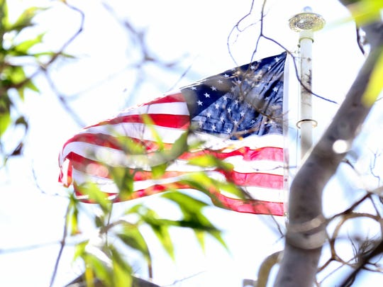 """""""Old Glory"""" peeks through the trees at Veterans Park."""