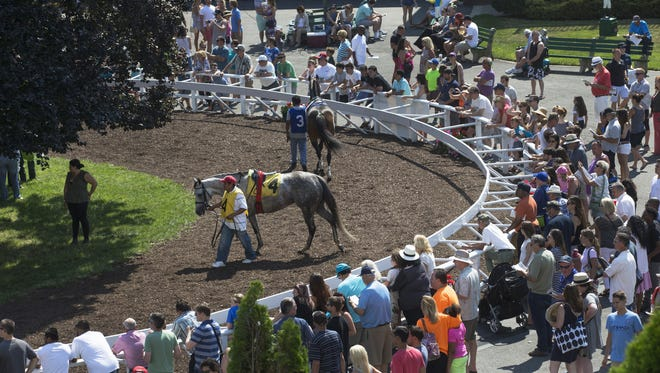 the paddock at Monmouth Park.