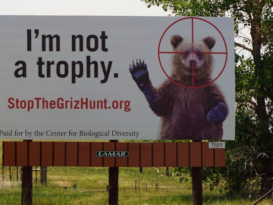 A billboard near the Colorado-Wyoming border asks drivers to oppose a grizzly bear hunt in Wyoming that was scheduled to start Sept. 1. A judge has delayed the hunt, which hunters say is needed to reduce conflicts between humans and grizzlies.