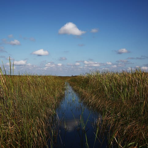 Everglades National Park proposing entrance fee increases to pay for maintenance backlog