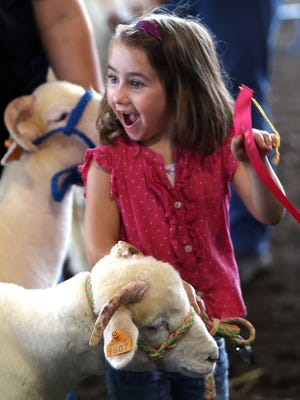 6-year-old Amanda Oberholtzer of Pennsylvania reacts to winning a second place ribbon for her Horned Dorset, 'Marcy' during the annual Sussex County Farm and Horse show. August 6, 2016, Augusta, NJ