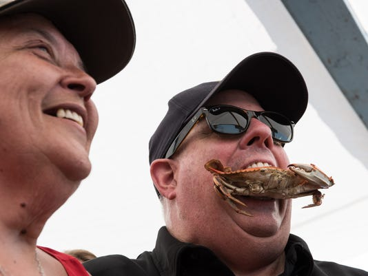 hogan crab bay