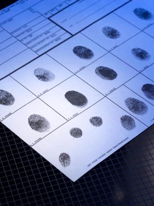 635718596493556235-fingerprints