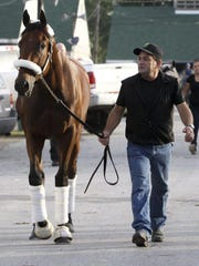 American Pharoah is led by assistant trainer Jimmy Barnes on the backside at Churchill Downs last month. The Triple Crown winner continued to train well at Santa Anita on July 12 in preparation for the Haskell Invitational at Monmouth Park on Aug. 2.