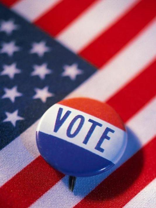 635939261313089573-vote2.jpg