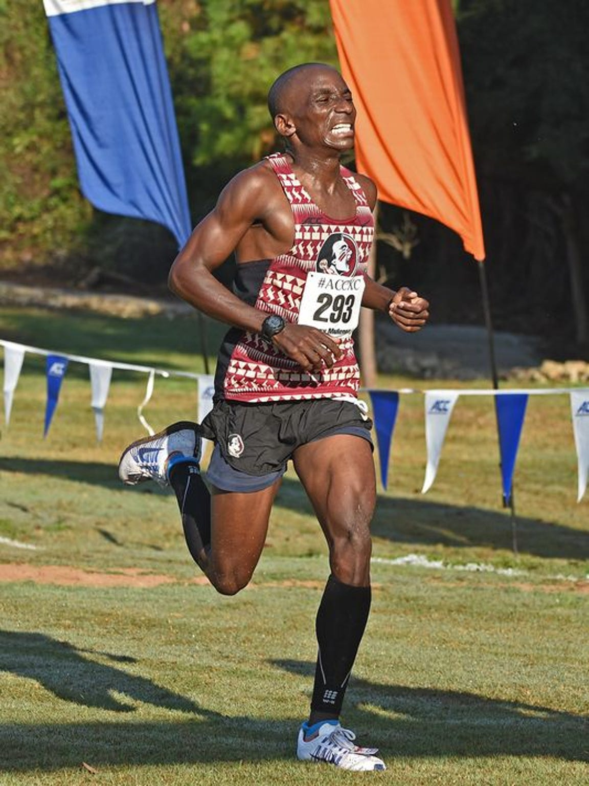 Mulenga and the Seminoles are in the midst of the 2016 cross country season.