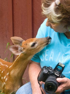 The Howell Nature Center, 1005 Triangle Lake Road, has taken in 3,100 birds, mammals and reptiles for care.