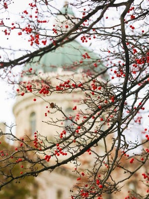 The Indiana House on Thursday passed an amended version of Senate Bill 558.