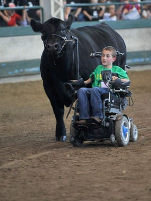 Alec Gotto, 11, leads his Angus steer J.D. (John Deere) in the Governor's Charity Steer Show on Saturday, Aug. 12, 2017, at the Iowa State Fair