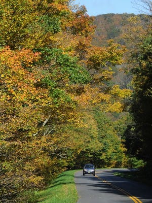 A few of Craggy Gardens in the fall.
