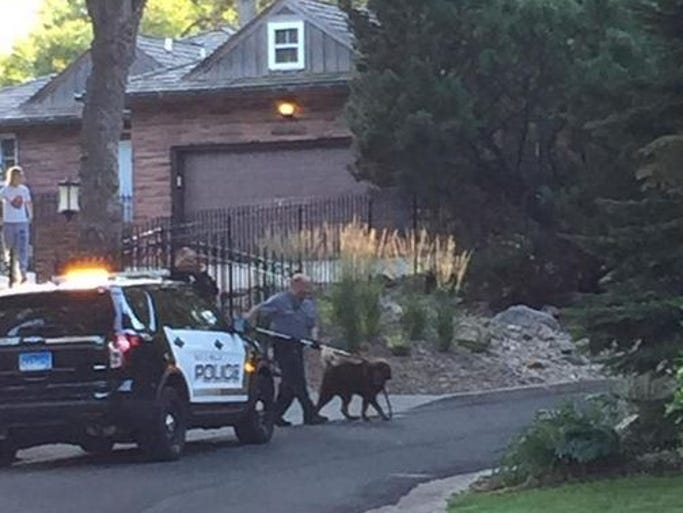 The second of two dogs is taken to an Animal Control