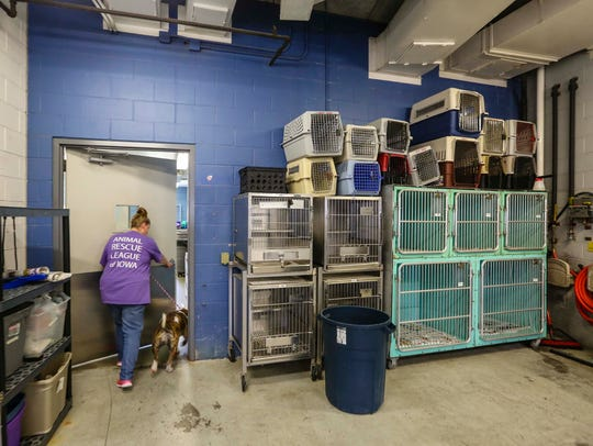 Kennel attendant Carrie Fleener of Ankeny puts a dog