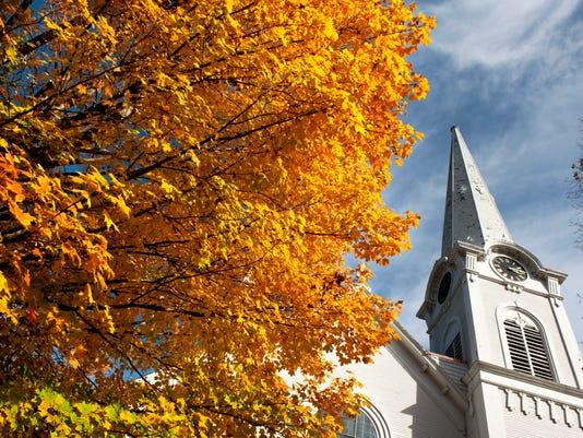 Vermont leaves.jpg