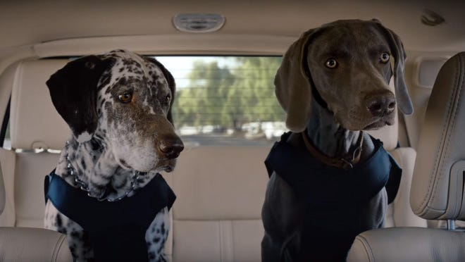 """During the 30-second spot titled """"Time to Eat,"""" McConaughey has a conversation with two dogs who are sitting in the back seat while he drives a 2017 Lincoln Navigator."""
