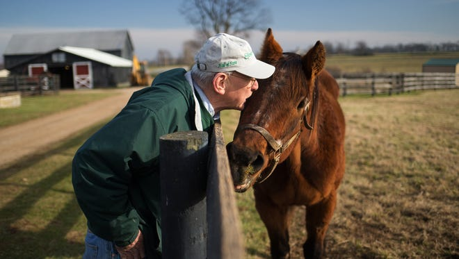 Michael Blowen gives a peck on the blaze to Ogygian, Monday, Dec. 15, 2014 at Old Friends Retirement Thoroughbred Farm in Midway. Photo by Jonathan Palmer, Special to the CJ Michael Blowen owns and operates Old Friends a haven where thoroughbreds who have finished their careers go to spend the rest of their lives. It is a place where racing fans can come to visit and feed the horses carrots Blowen says. It has been a 10 year labor of love that started after Blowen saw that non viable stallions were being sent to the slaughterhouse in Japan.