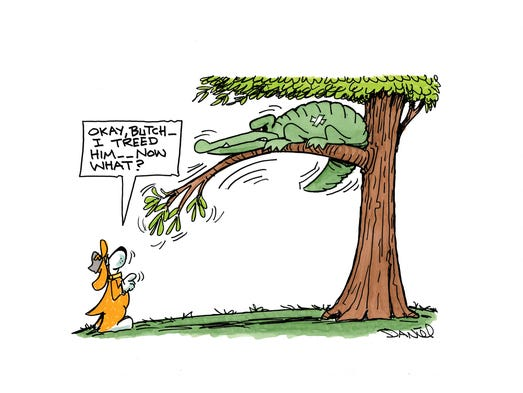 Charlie Daniel Voltoon for Tennessee-Florida game
