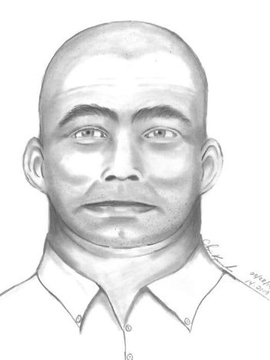 suspect.drawing.JPG