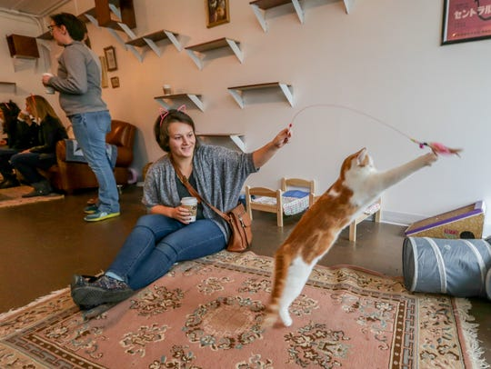 Amanda Keating plays with Jonah, a cat from the Humane