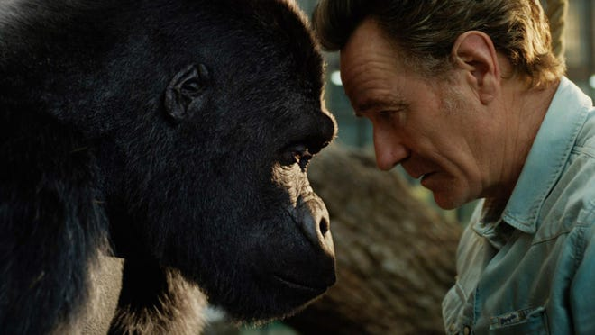 """Ivan (voiced by Sam Rockwell) and Bryan Cranston as Mack star in """"The One and Only Ivan."""""""