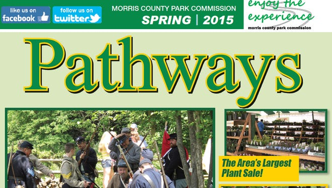 Spring 2015 Pathways