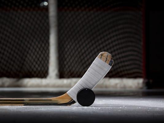 ice hockey_stick_puck_net.jpg
