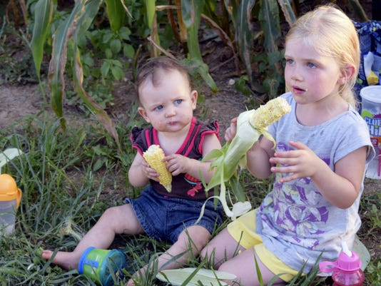 Gleaners-to-be, Evelyn and Taliya Raber, managing quality control and learning how delicious raw, fresh sweet corn tastes.
