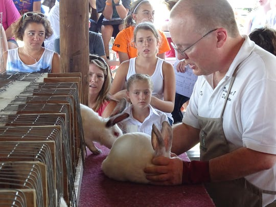 Judge Terry Fender takes a look at a rabbit Tuesday during the Crawford County Fair.