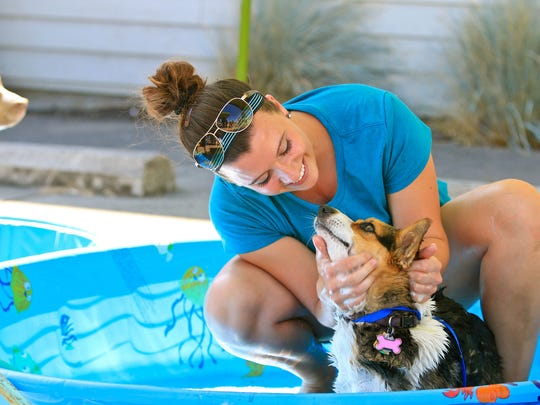 The second annual ?Paws for the Cause? was a happy day for both pets and people. Stayton Veterinary Hospital hosted the combination dog wash/food drive on Aug. 20 and collected both food and funds to benefit SafeHaven Humane Society and the Marion Polk Food Share.