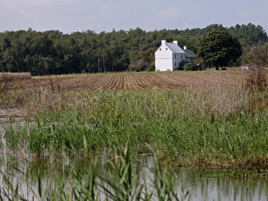 A farm house sit amongst corn fields of Thorntown Rd.
