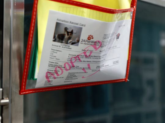 Paperwork on a cat's cage, Monday, July 24, 2017, lets people know that Lollipop has been adopted at the Farmington Regional Animal Shelter. Lollipop was one of 277 animals adopted from the shelter during the Priceless Pets event.
