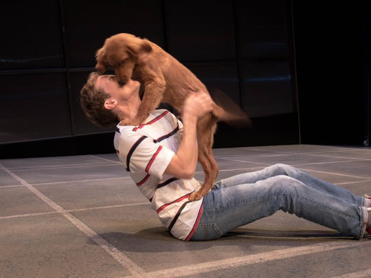 """Mickey Rowe, who stars as Christopher in Indiana Repertory Theatre's production of """"The Curious Incident of the Dog in Night-Time,"""" plays around with his canine co-star Logan."""