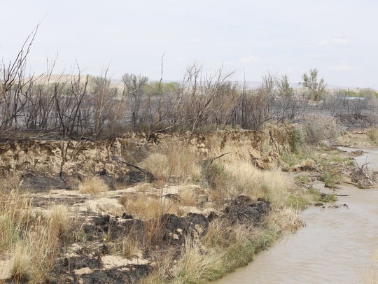 An area along Salt Creek Wash in Shiprock was burned during a 100-acre fire on Sunday.