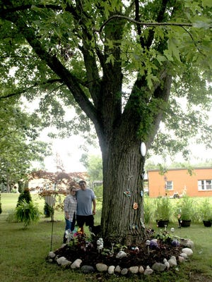 The large oak tree in the center of Manny and Charlene's backyard was planted the same year that the house was built in the late 1940s.