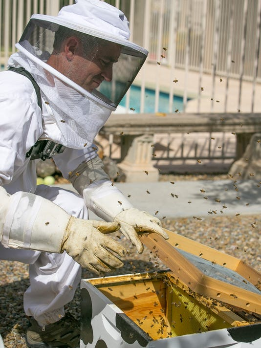 Removing unwanted bees instead of killing them