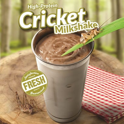 A promotional image for the High-Protein Cricket Milkshake,