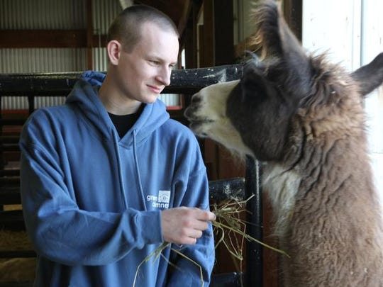 Student Peter Chaiko feeds Java the llama May 12 at Green Chimneys in Patterson. Peter's parents died in their native Russia and he was put in an orphanage. Adopted by a family in Westchester, he didn't thrive until he was enrolled in Green Chimneys, where he has progressed past any expectations and will be graduating in June.