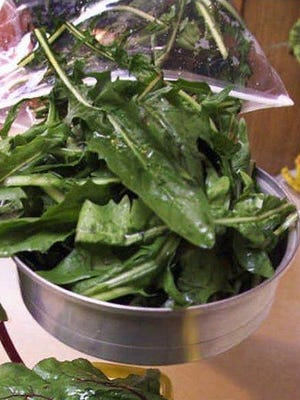 Dandelion greens are tasty when served with salt, pepper, butter and a dash of vinegar.