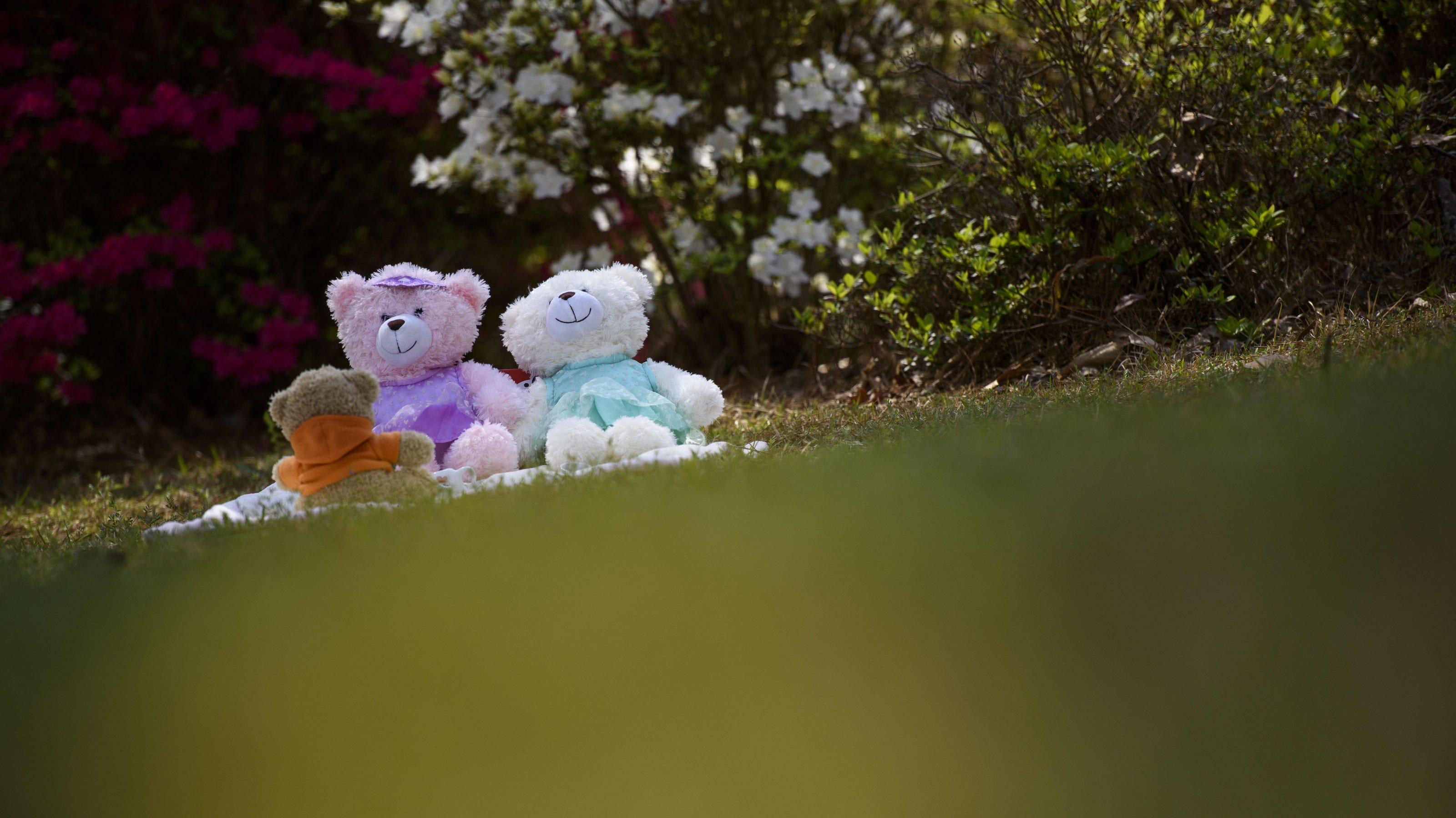 Fayetteville Nc Kinwood Christmas Lights 2020 Teddy bears and Christmas lights: Fayetteville neighbors find ways