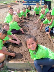Students learned firsthand how to plant seeds.
