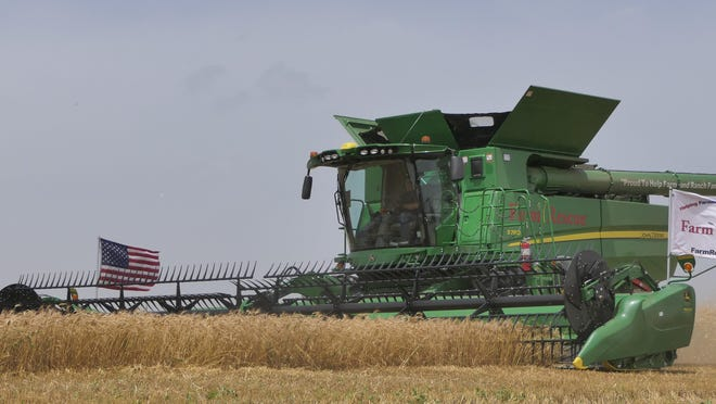 Harvesting wheat in Abilene on June 28, 2020.