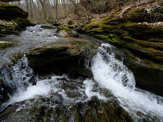 A small waterfall on Trout Run keeps things interesting for younger or less patient hikers.