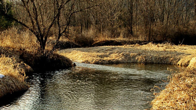 Water temperatures will dictate how to fish for trout in the same hole from season to season.