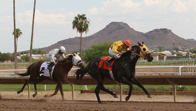 Turf Paradise in Phoenix will have mint juleps and a live feed of the Kentucky Derby.