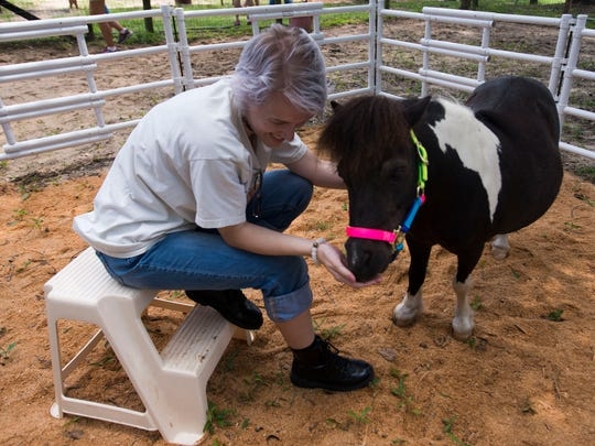 Bridgette Kelley visits with miniature horse, Lightning Bug, at the Panhandle Equine Rescue's birthday party for one of its horses Saturday afternoon. The organization celebrated the 32nd birthday of a rescued mare named Sky.