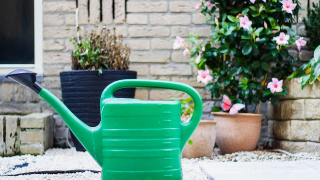 A watering can may be your garden's best friend during hot, dry spells.