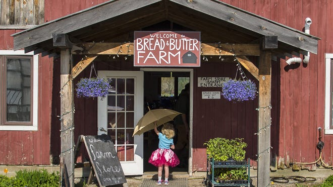 Samantha Dorman, 5, opens her umbrella at the entrance to the Bread and Butter Farm store in Shelburne on May 20. The space also houses the Blank Page Café. Bread and Butter Farm encompasses several small enterprises on the property.
